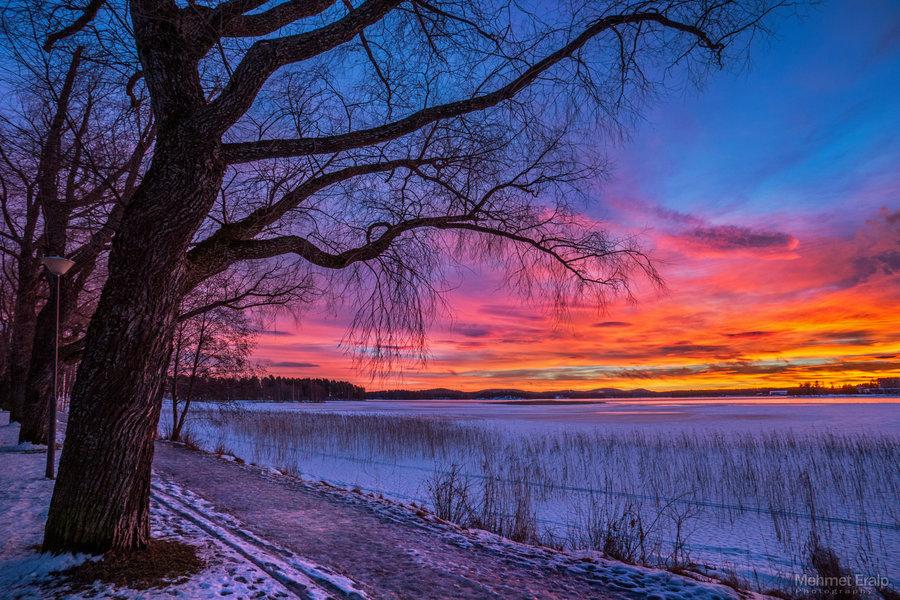 Offer Image  Winter